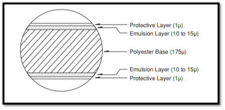 Layers of a radiographic film